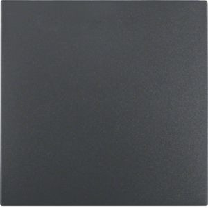 Berker - 16201606 - Flächen-Wippe S.1/B.3/B.7